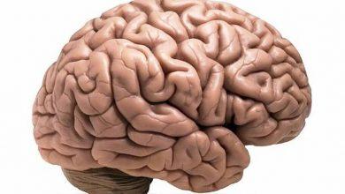 Photo of Identificar síntomas y actuar con velocidad: las claves para enfrentar una emergencia neurológica como el ACV