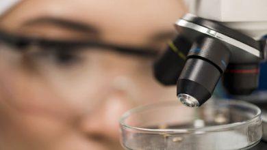 Photo of Startup Ciencia: Ministerio de Ciencia y Corfo lanzan nuevo programa para emprendimientos de base científica tecnológica