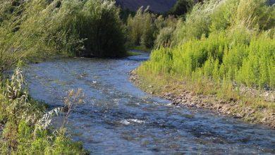 Photo of Seremi del Medio Ambiente llama a participar en la Consulta Digital del Agua.
