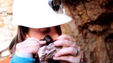 """Photo of Ministro Prokurica destaca potencial de Chile para producir """"tierras raras"""", mineral muy importante para la tecnología"""