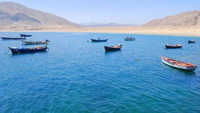 """Photo of Ratifican proyectos ganadores del """"Programa de transferencia para el sector pesquero artesanal región de Antofagasta 2018-2020"""""""