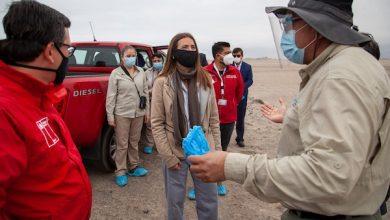 Photo of Ministra Schmidt inicia proceso para proteger sector de nidificación del gaviotín chico e inspecciona el primer Santuario de la Naturaleza de Antofagasta