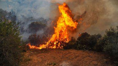 Photo of Unos 60.000 evacuados de localidad cerca de Los Ángeles por nuevo incendio forestal
