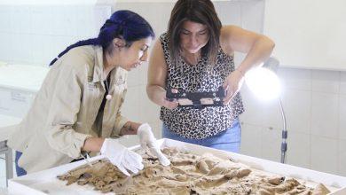 Photo of El Área de Museos y Patrimonio sigue entregando conocimientos a estudiantes y a la comunidad a través de charlas y recorridos virtuales