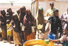 Photo of La pandemia de COVID-19 agravó el hambre en el mundo, según la FAO