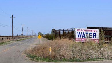Photo of Estados Unidos entrará en mega sequía, que será la peor en 1,200 años