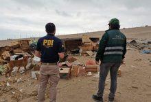 Photo of Increíble: abandonan a cerdos en medio del desierto