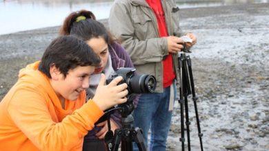 """Photo of Últimos días para inscribirse en el 3° Seminario Internacional """"La Infancia Quiere Cine"""" sobre cine y audiovisual en el aula"""