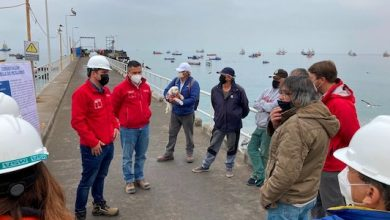 Photo of En 2021 estarán listas las obras de conservación del muelle de pescadores de Mejillones