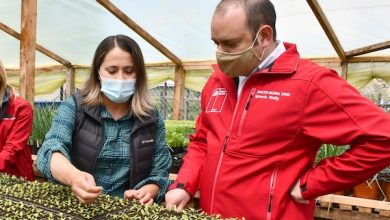 """Photo of Director Nacional de CONADI invita a comunidades indígenas a postular """"emprendimientos verdes"""" en todo Chile"""