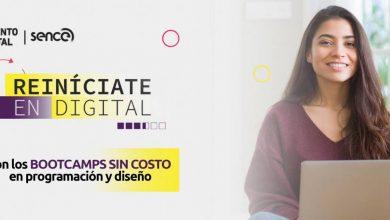 Photo of Hasta el 9 de agosto: Postula a una de las 1.400 becas que tiene Sence para cursos del área digital
