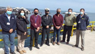 Photo of Ley  de Caletas: Sernapesca recibe destinación de caleta Punta Arenas
